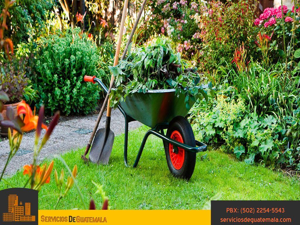 Jardineria-tipo-de-servicios-cuidados-aspectos-mantenimientos-tipos-de-jardines-servicios-de-guatemala